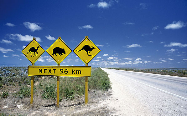 Ostraly, rencontre de la nature australienne et du bien-être