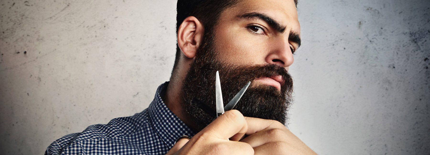 barbe forme et visage the new men in the city. Black Bedroom Furniture Sets. Home Design Ideas