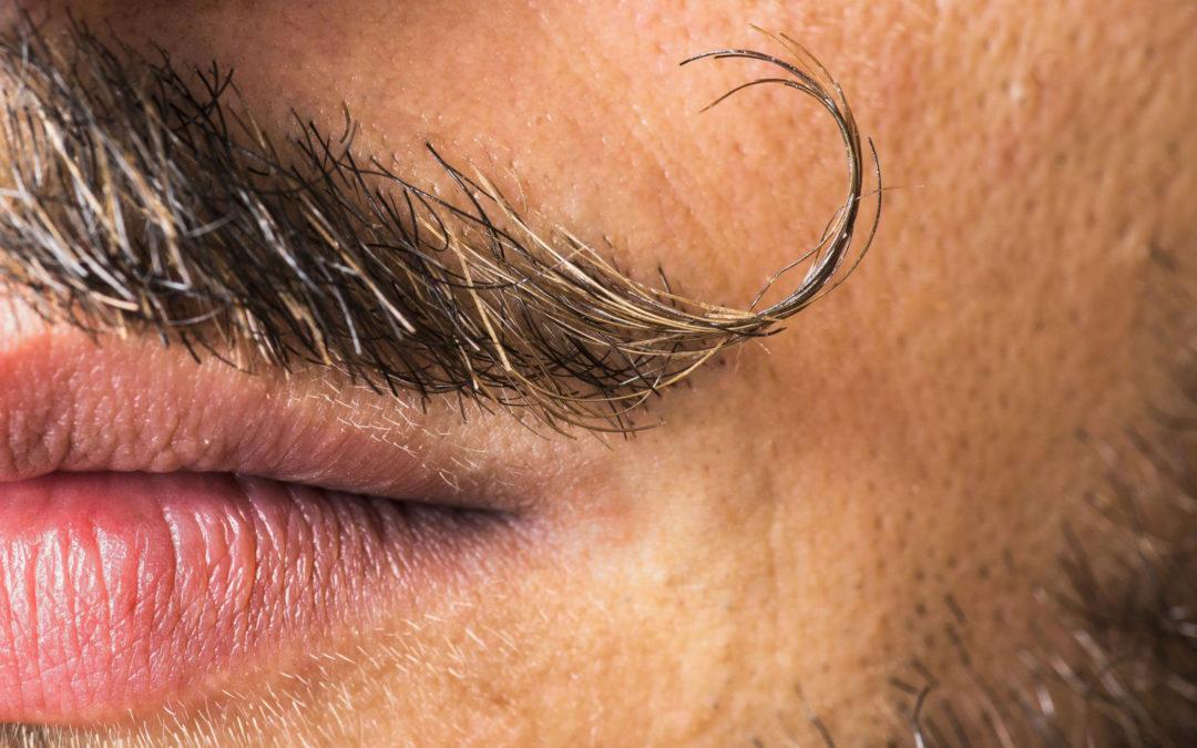 Dompter sa moustache pour Movember